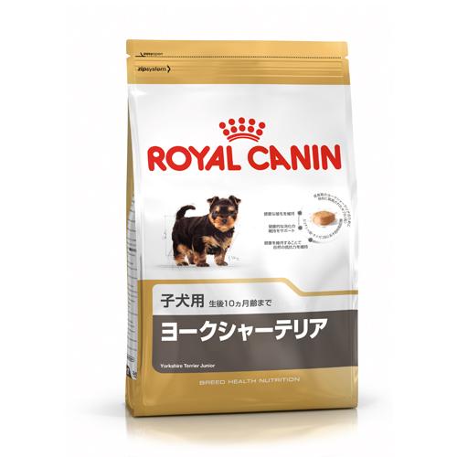ヨークシャーテリア 子犬用 500g